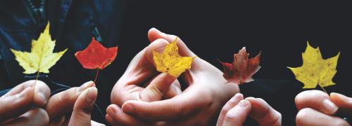 Как поддержать и укрепить иммунитет осенью